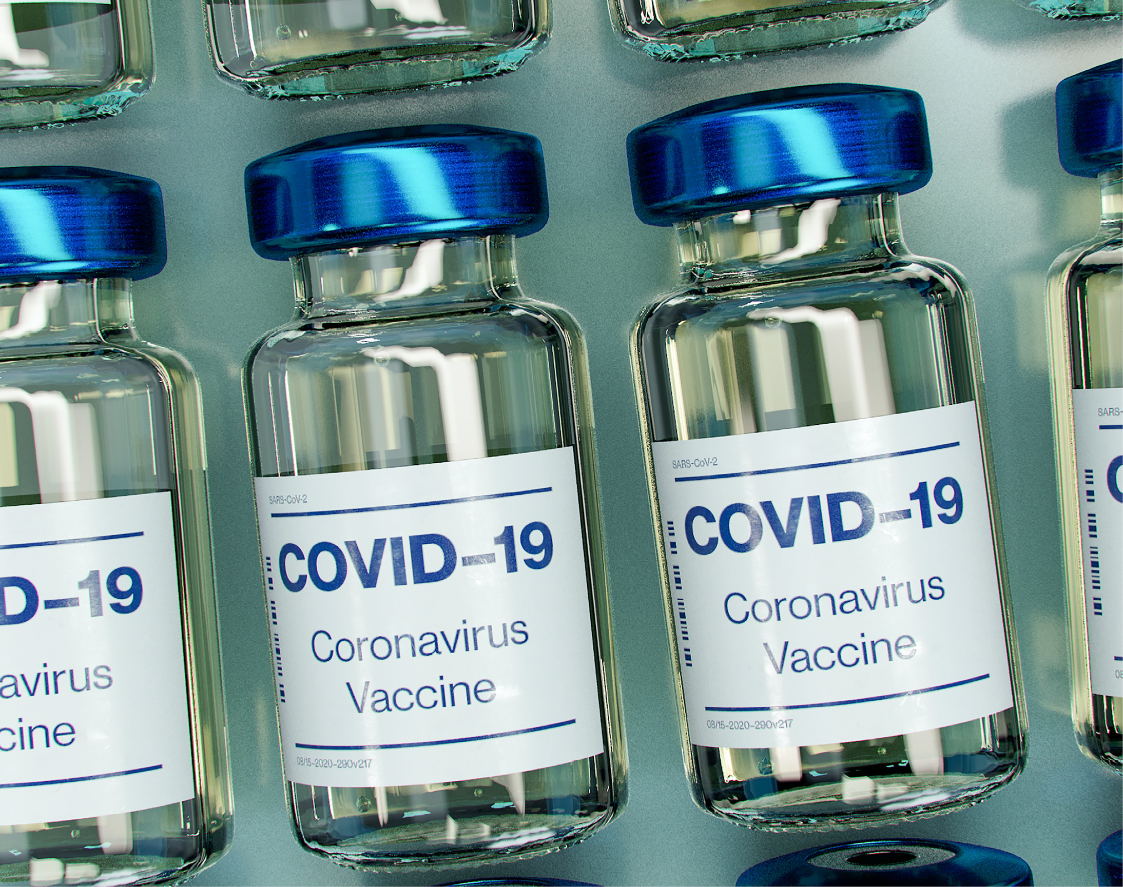 NEWS SMALL Vaccine website